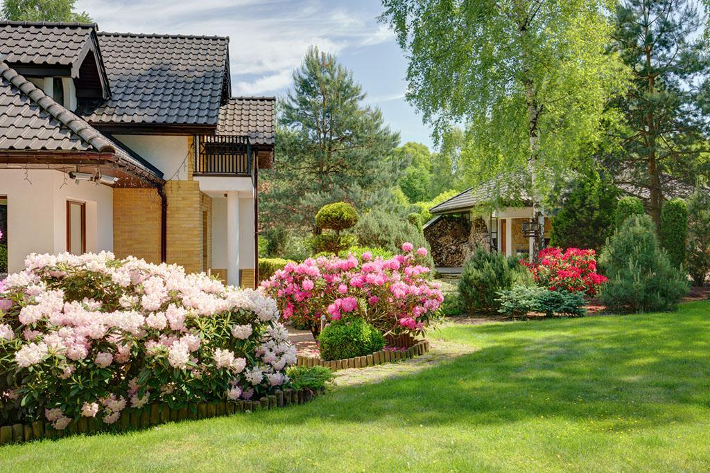 Approfitta del Bonus Verde per il tuo giardino